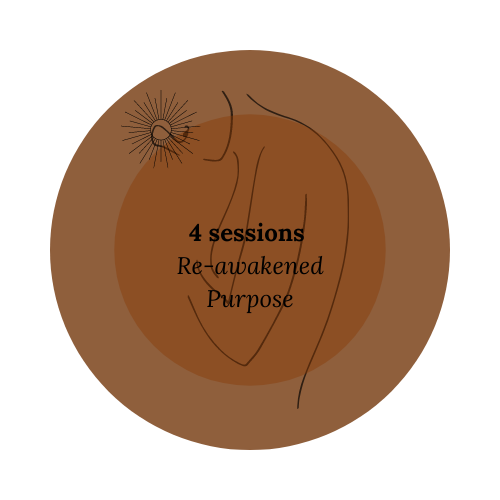 8 sessions Purposeful action(1)